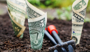 Banknote rolled in the soil